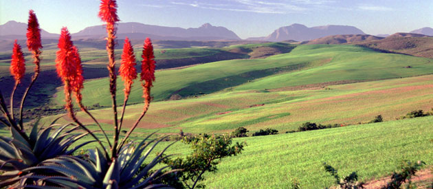 Overview of the Overberg
