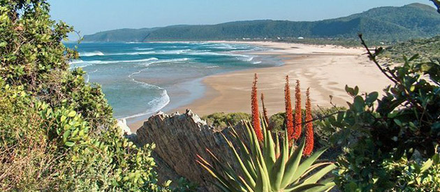 Towns - Western Cape - South Africa