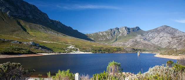 Pringle Bay - Western Cape