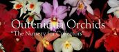 OUTENIQUA ORCHIDS, GEORGE