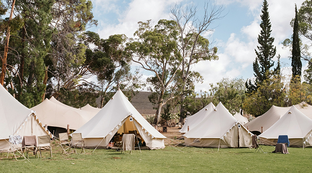 ... Bedouin tent hire Cape Town Marquee and tent hire Cape Town Freeform marquee tent ... & WOLFKOP MARQUEE TENT HIRE - Businesses in The Western Cape