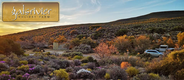 GATSRIVIER HOLIDAY FARM, CERES KAROO