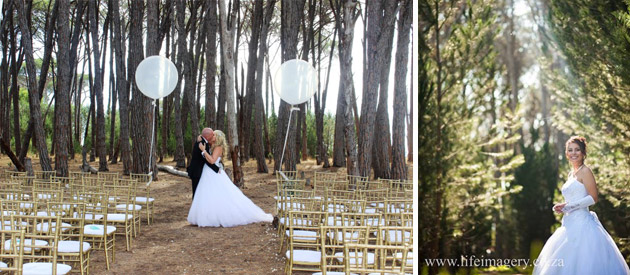 Winery Road Forest Wedding Venue Somerset West Stellenbosch Corporate Event