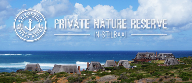 BOSBOKDUIN PRIVATE NATURE RESERVE, STILBAAI