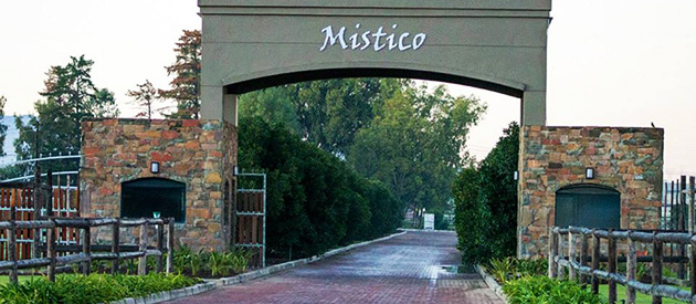 mistico, equestrian centre, paarl, durbanville, event, wedding, conference, venue, working equestrian estate, horses, stables, western cape
