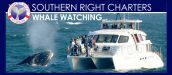 SOUTHERN RIGHT CHARTERS, HERMANUS
