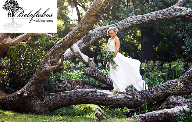 beloftebos, wedding venue, stanford, self catering, accommodation, cottages, functions, events, western cape