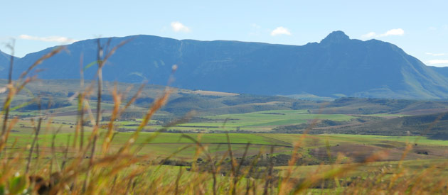 Riversdale is situated in the Western Cape province of South Africa.