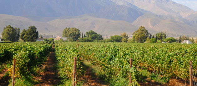 Worcester is a town situated in the Cape Winelands of the Western Cape, South Africa.